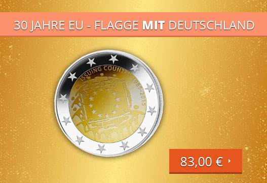 30 Jahre EU - Flagge MIT Deutschland